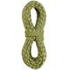 Edelrid Python Klatrereb 10mm 40m grøn